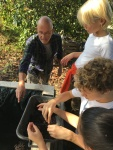 uitleg wormen compost